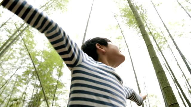vídeos de stock, filmes e b-roll de jovem torcendo e girando em bambu - vista de ângulo baixo
