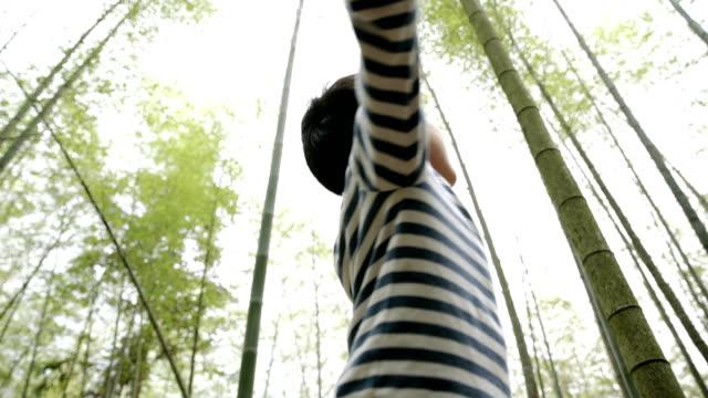 vídeos de stock e filmes b-roll de young boy cheering and spinning in bamboo grove - 6 7 anos