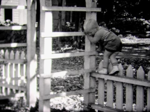 1937 young boy climbs a trellis - picket fence stock videos and b-roll footage