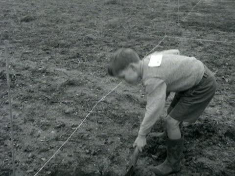 vidéos et rushes de a young boy digs up a plot of land during a digging competition - concurrent