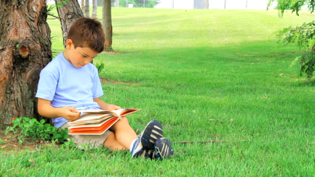 stockvideo's en b-roll-footage met young boy enjoys reading - ontsnappen