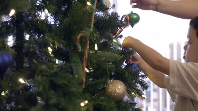 cu young boy helping to decorate christmas tree stock footage video getty images - Videos Of Decorated Christmas Trees