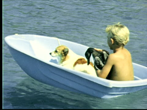 stockvideo's en b-roll-footage met montage young boy in very small boat with puppy cradles duck. young boy floats on raft. two young boys in small boat hold puppy and duck. duck jumps into water / bermuda - cormorant