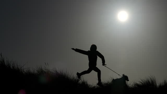 vidéos et rushes de a young boy leaping and running across sand dunes with his dog. - crépuscule