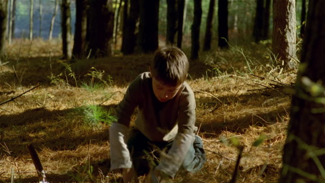 young boy on his knees using hands to dig hole / planting tree in hole - cinematography stock videos & royalty-free footage