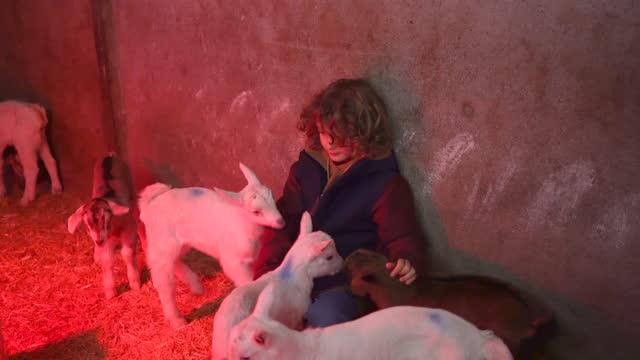 stockvideo's en b-roll-footage met jonge jongen die met babygeiten onder rood licht speelt - one baby boy only