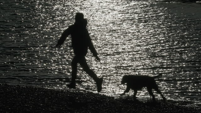 a young boy running along a beach with his dog. - one boy only stock videos & royalty-free footage