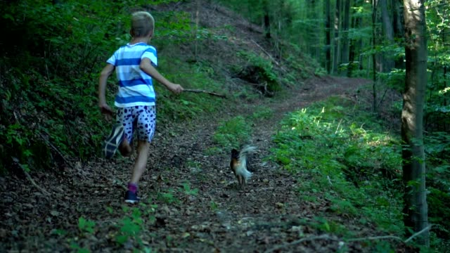 young boy running  in a forest with dog - children only stock videos & royalty-free footage