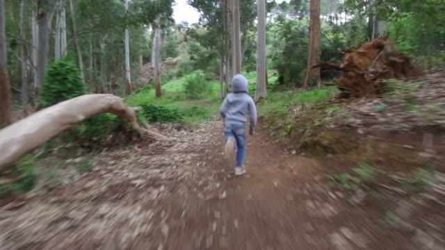 young boy running through a lush green forest - following stock videos & royalty-free footage