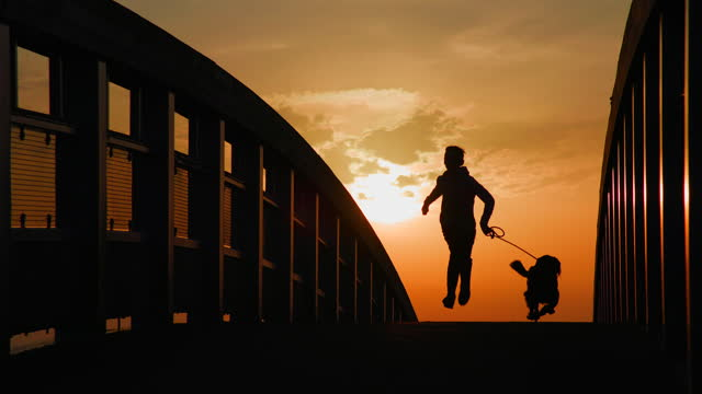 a young boy running with his pet dog over a bridge at sunset. - active lifestyle stock videos & royalty-free footage