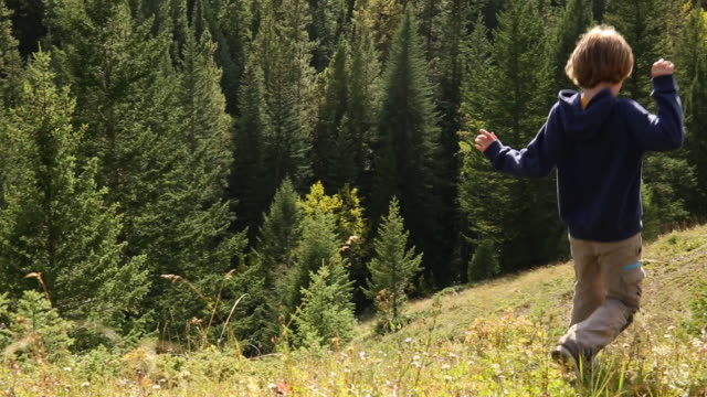 young boy runs down steep hill towards forested ridge - discovery stock videos & royalty-free footage