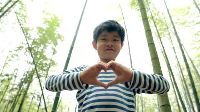 young boy showing heart shape in bamboo grove - bamboo plant stock videos & royalty-free footage
