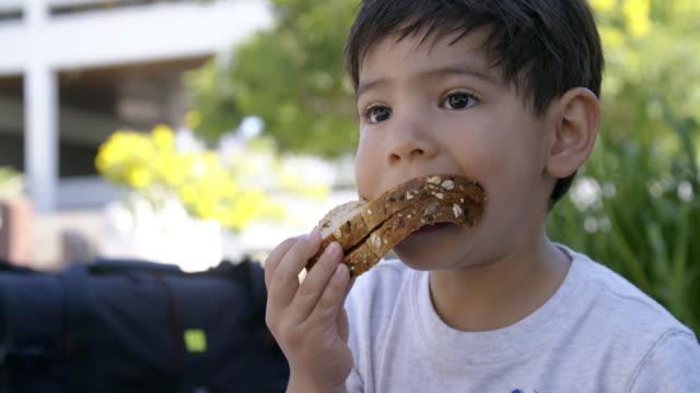 young boy takes a bite from his sandwich - panino ripieno video stock e b–roll