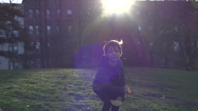 vídeos de stock e filmes b-roll de young boy throwing leaves and jumping with lens flare - casaco