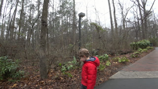 young boy walking along a path with dinosaur models - museum stock videos & royalty-free footage
