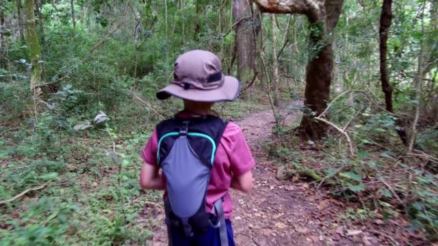 vídeos y material grabado en eventos de stock de niño caminando por el bosque - mochila bolsa