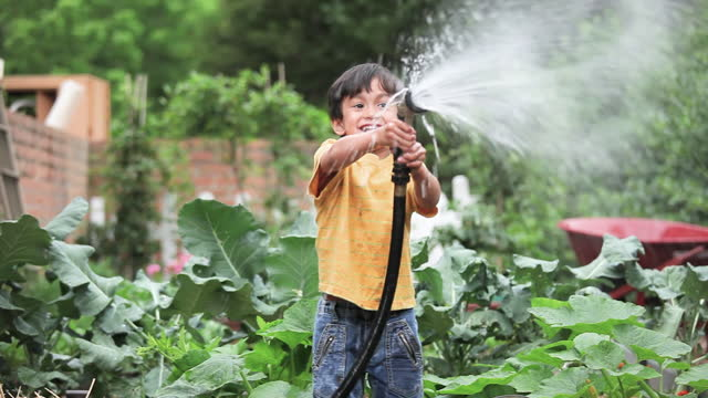 young boy watering vegetable garden - schmutzig stock-videos und b-roll-filmmaterial