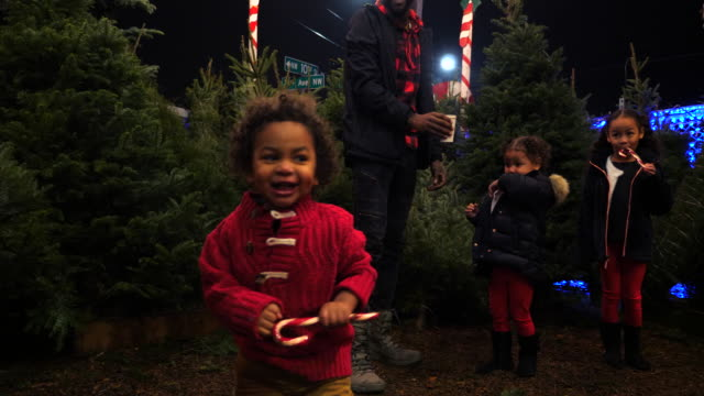 ms young boy with candy cane playing in christmas tree lot while family shops for tree - candy cane stock videos & royalty-free footage