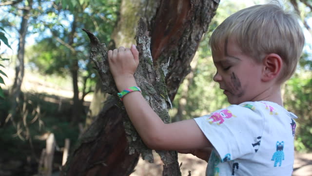 vidéos et rushes de young boy with dirt on his face breaking bark off of a tree on a hot summer day. - kelly mason videos