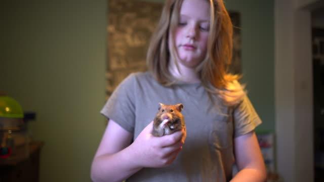 vídeos y material grabado en eventos de stock de a young boy with his pet hamster. - hamster