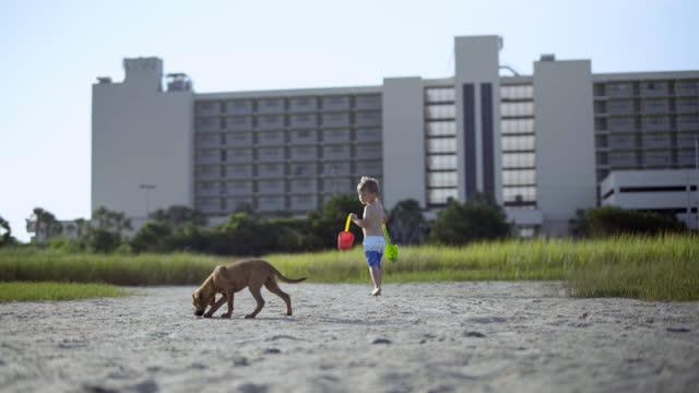 young boy with sand toys looks back at puppy as he walks through coastal marsh. - badbyxor bildbanksvideor och videomaterial från bakom kulisserna