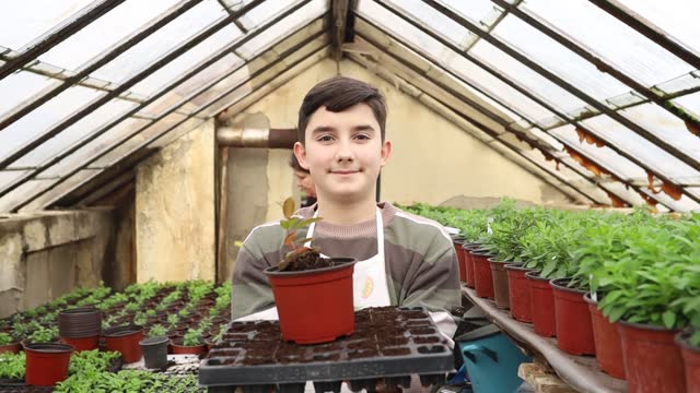 young boy working in greenhouse farm - organic farm stock videos & royalty-free footage