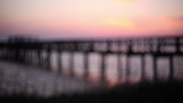young boys run through tall grass towards dock as the sun sets over the water - wilmington north carolina stock-videos und b-roll-filmmaterial
