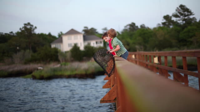 young boys throw a crab trap into a lake from a dock. - wilmington north carolina stock-videos und b-roll-filmmaterial