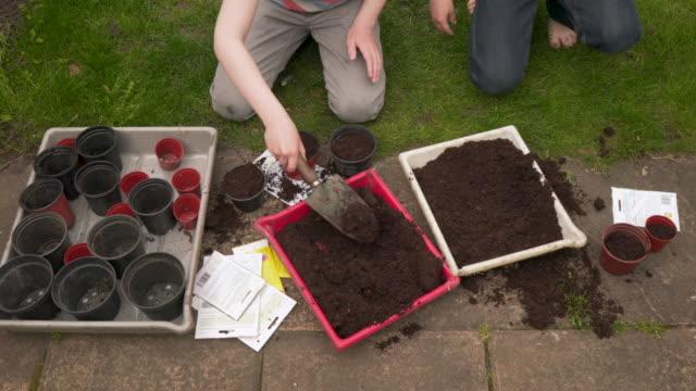 vídeos de stock e filmes b-roll de young brothers gardening - espalhar