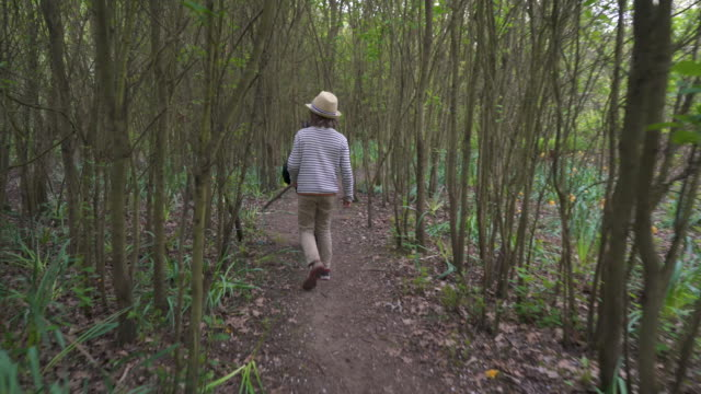 young brothers walking through woodland - walking point of view stock videos and b-roll footage