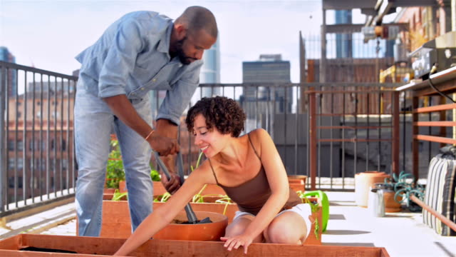 Young Californian couple roof gardening
