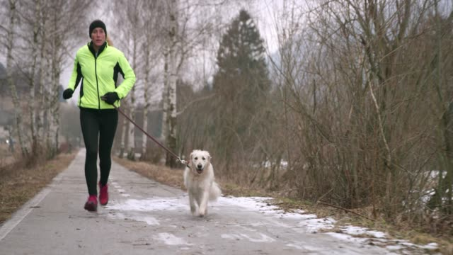 young caucasian woman running on a walkway in winter with her dog - warm clothing stock videos & royalty-free footage