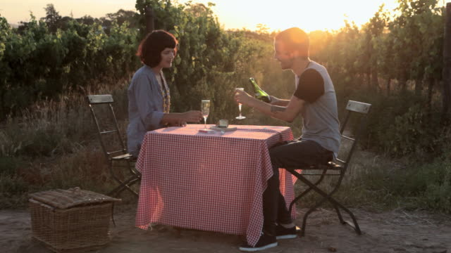 Young couple at table in field, having wine and kissing