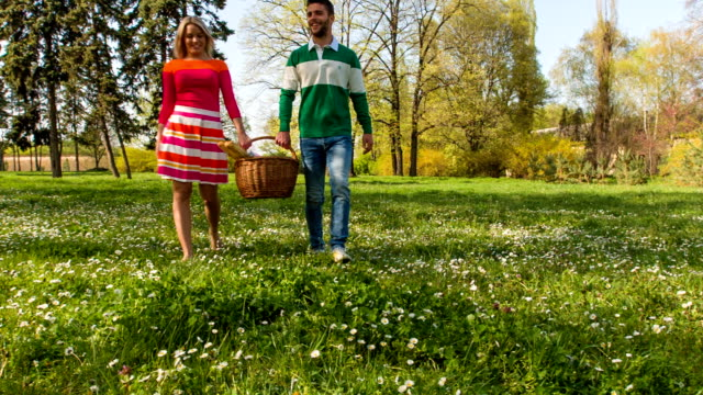 young couple carrying picnic baskets in park - picnic basket stock videos & royalty-free footage