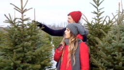 Young couple choosing christmas tree