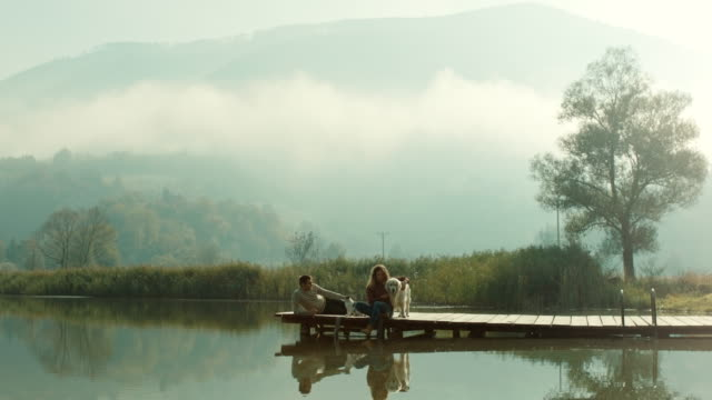 vídeos y material grabado en eventos de stock de pareja joven, el perro y el gato sentado en el muelle en el lago - perro y gato