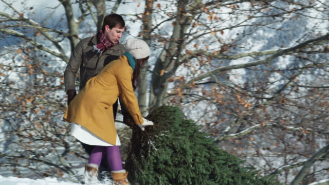 young couple dragging a Christmas tree through the snow