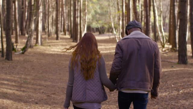 a young couple enjoying a forest walk in autumn - schiebermütze stock-videos und b-roll-filmmaterial