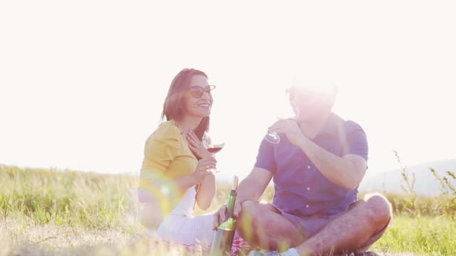 stockvideo's en b-roll-footage met young couple enjoying a glass of red wine - picknick