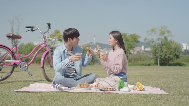 young couple enjoying beer and fried chicken while on a picnic in the han river park - south korea couple stock videos & royalty-free footage