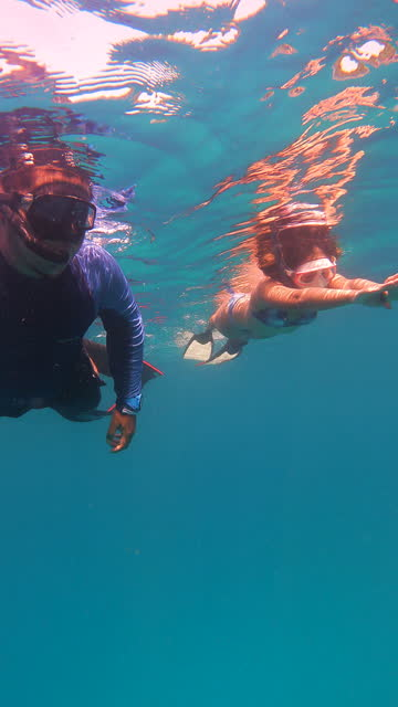 4k young couple free diver wear long fins freediving skindiving snorkeling in the sea - aqualung diving equipment stock videos & royalty-free footage