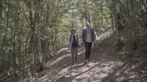 young couple hiking in the forest - tracking shot stock videos & royalty-free footage