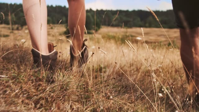 young couple hiking on field during vacation - young couple stock videos & royalty-free footage