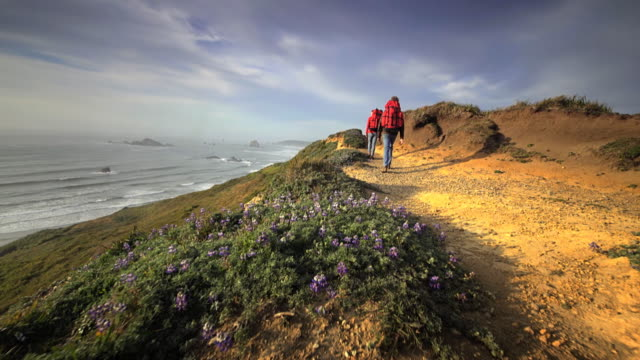 young couple hiking trail overlooking pacific ocean, oregon - oregon coast stock videos & royalty-free footage