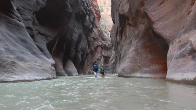 junges paar hand in hand in the narrows canyon - zion narrows canyon stock-videos und b-roll-filmmaterial