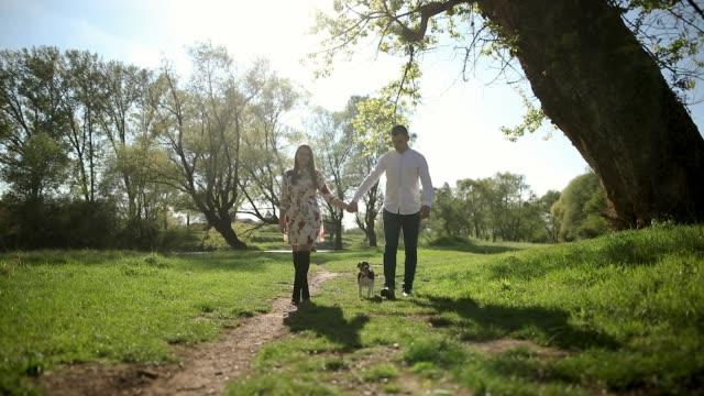 vídeos y material grabado en eventos de stock de joven pareja en un paseo con jack russell terrier. disfrutar de actividades de fin de semana en el parque público - terrier