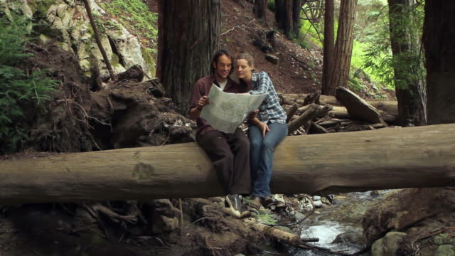 ws young couple in redwood forest looking at map and pointing / big sur, california, usa - redwood forest stock videos and b-roll footage