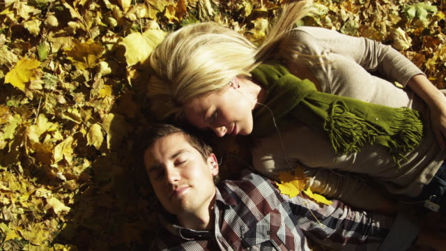 ms zo young couple lying in leaves / provo, utah, usa - provo stock videos & royalty-free footage