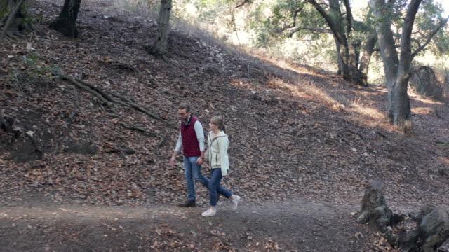 森 - 4 k ドローン ビデオでハイキングの若いカップル - full length点の映像素材/bロール