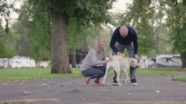 Young couple petting their dog in a park